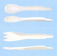 アオトプラス 紙カトラリー