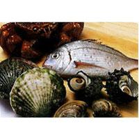 水産用ギフトボックス:フードボックス 【焼鯛・鮭】