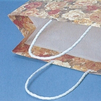 [紙袋/手提げ袋] HEIKO Pスムース 2才/3才/22-12